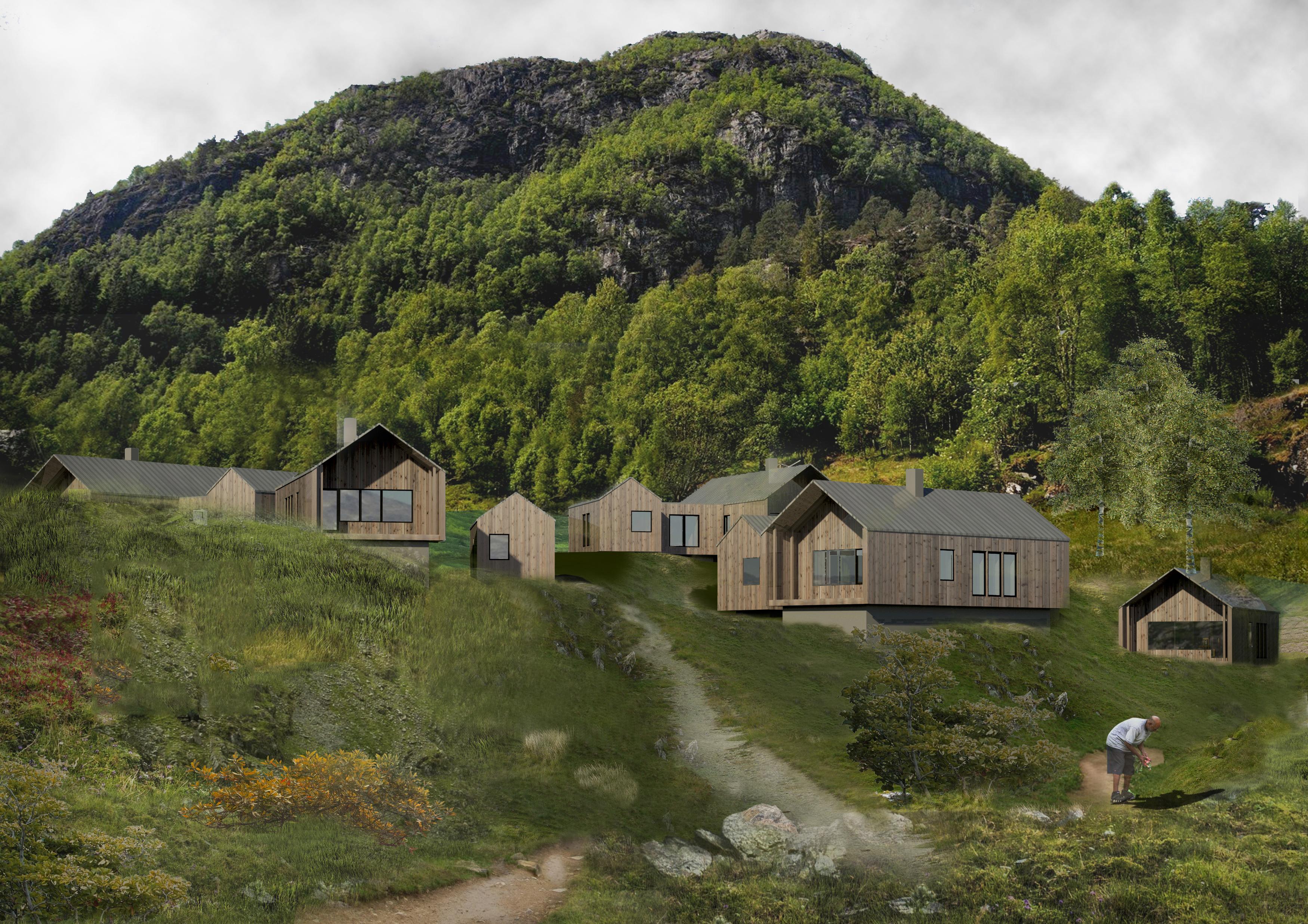 Mountain view houses